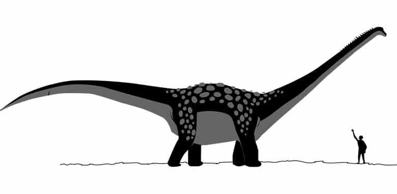 Antarctosaurus Giganteus
