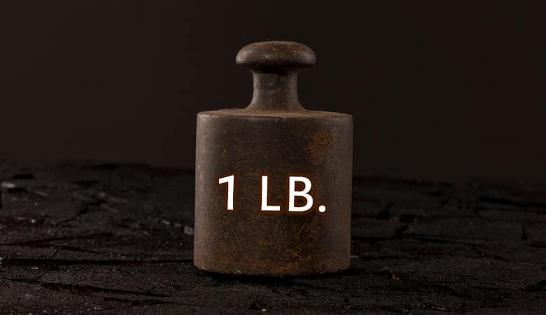 common-things-that-weigh-1-pound