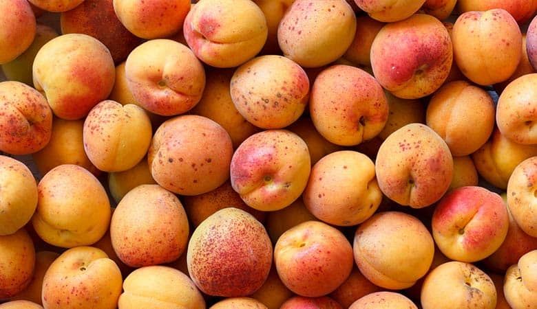 Apricots-light-weight
