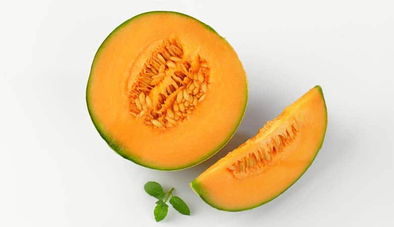Cantaloupe-light-weight