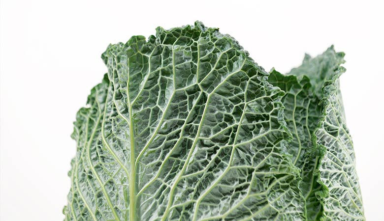 Kale-lightest-vegetable