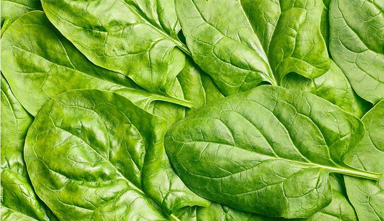 Spinach-lightest-vegetable