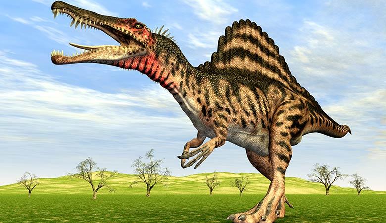 Spinosaurus-heaviest-animal