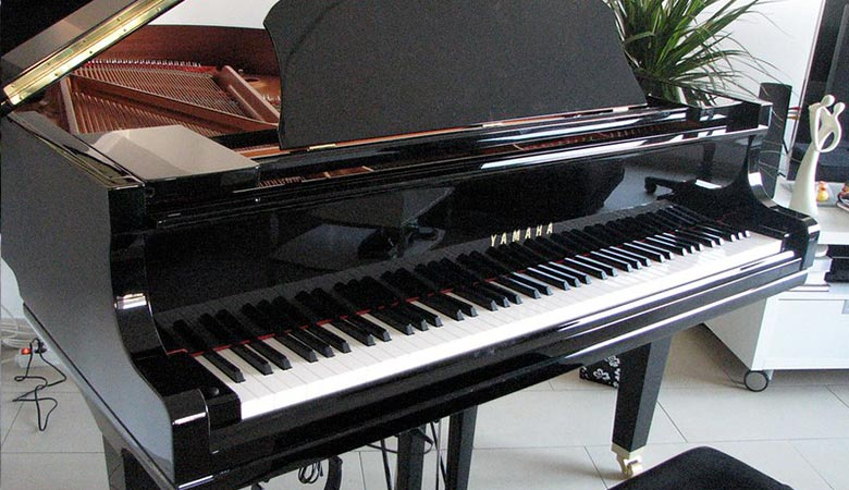 Grand-Piano-500-kilograms