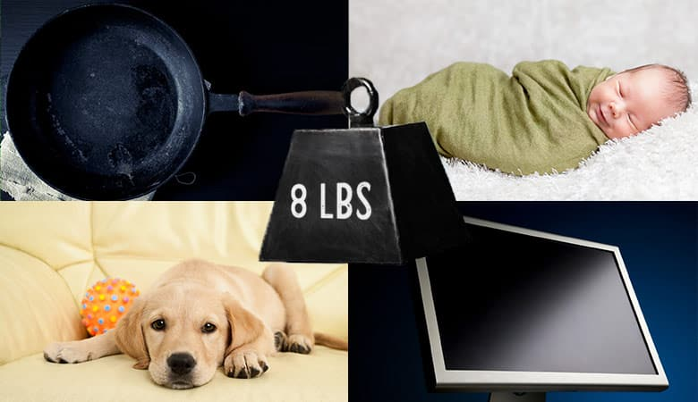 common-items-that-weigh-8-pounds