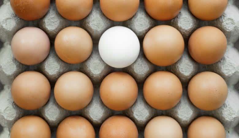 20-Dozen-Eggs-30-pounds