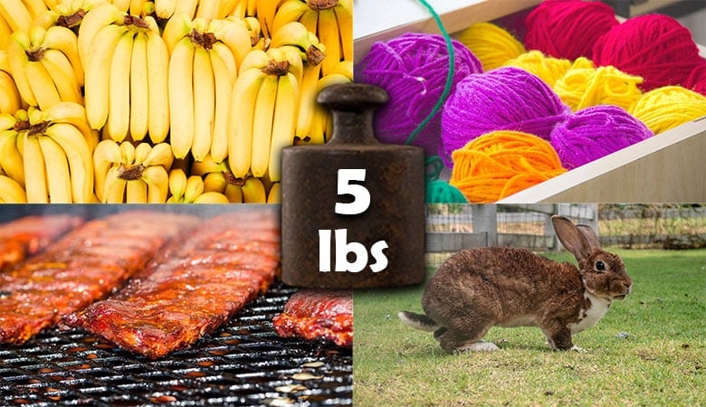 Common Items That Weigh About 5 Pounds