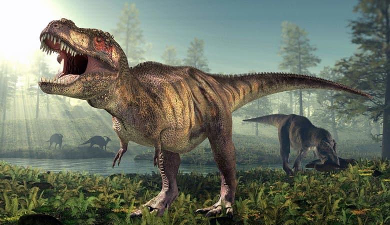 image of 2-3-tyrannosaurus-rex-15-tons