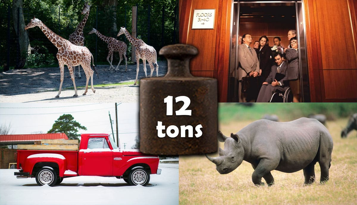 things-that-weigh-12-tons