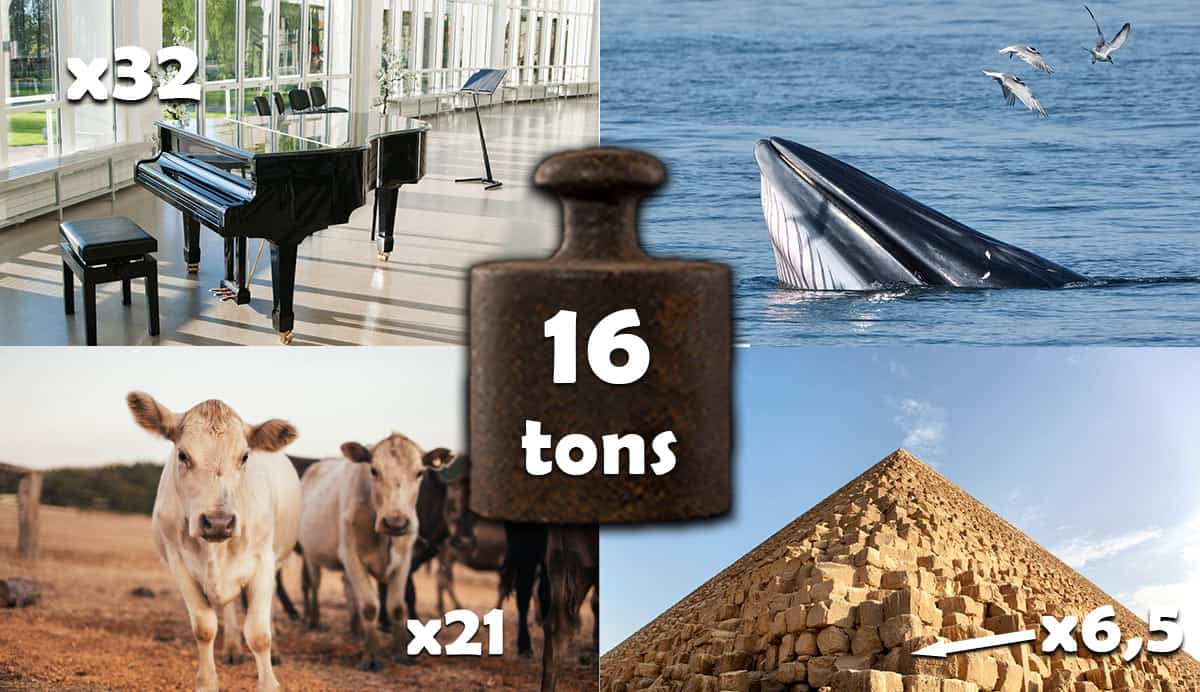things-that-weigh-16-tons