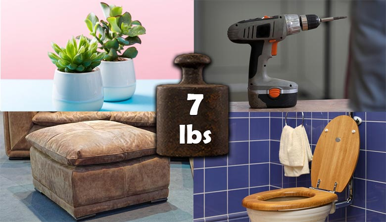common-things-that-weigh-7-pounds